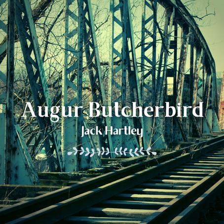 Augur, Butcherbird, Jack Hartley