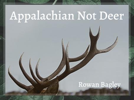 Appalachian Not Deer, Rowan Bagley