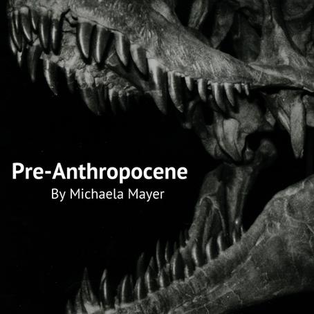 Pre-Anthropocene, Michaela Mayer