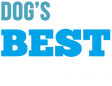 DBF_Logo_SMI.png