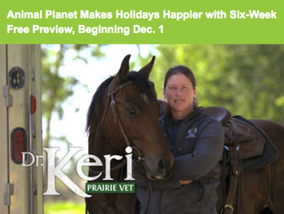 Animal Planet Makes Holidays Happier with Six-Week Free Preview, Beginning Dec. 1