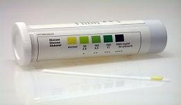 analyse-urine-diabete-chat.jpg