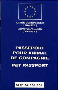 passeport_européen_chien_chat.jpg