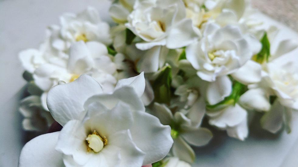 Buttered Balsams Perfume