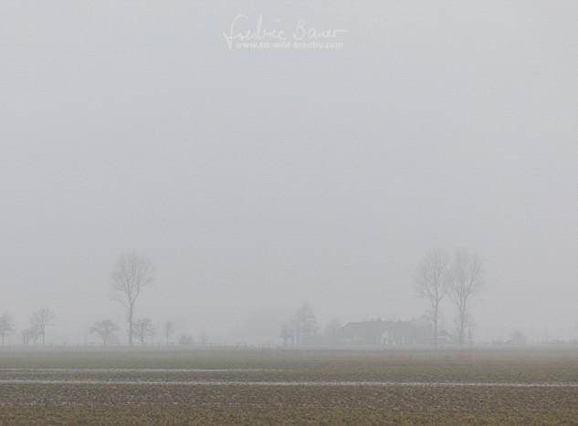 Landschaft-1337.jpg