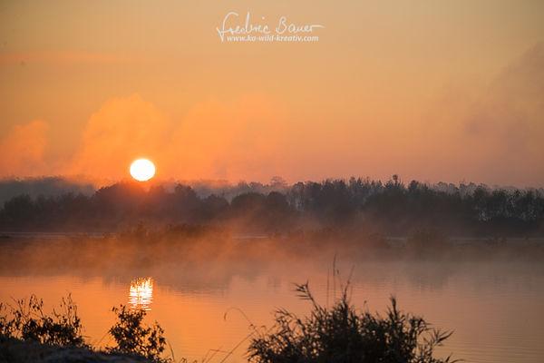 Sonnenaufgang  mit Nebel am See
