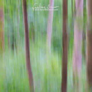 Landschaft-4606.jpg