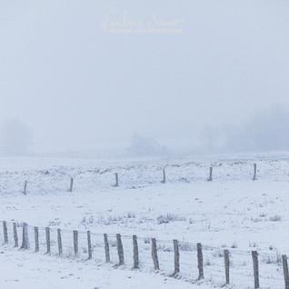 Landschaft-098.jpg