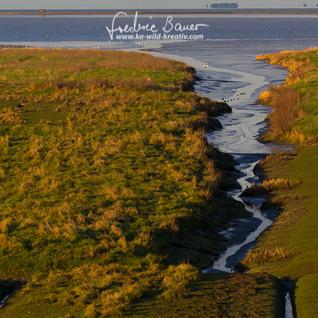 Landschaft-011.jpg