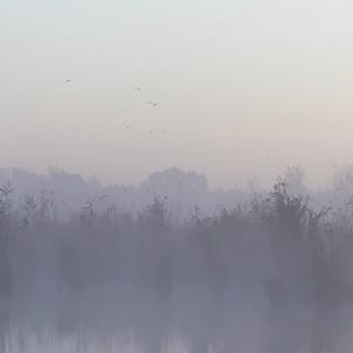 Landschaft-7265.jpg