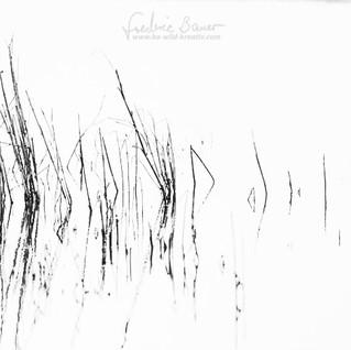 Landschaft-232.jpg