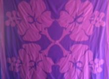 Te Aute 1 - L'Hibiscus