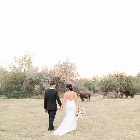 Greengale-Farm-Copyright-Sarah-Brooke-Ph