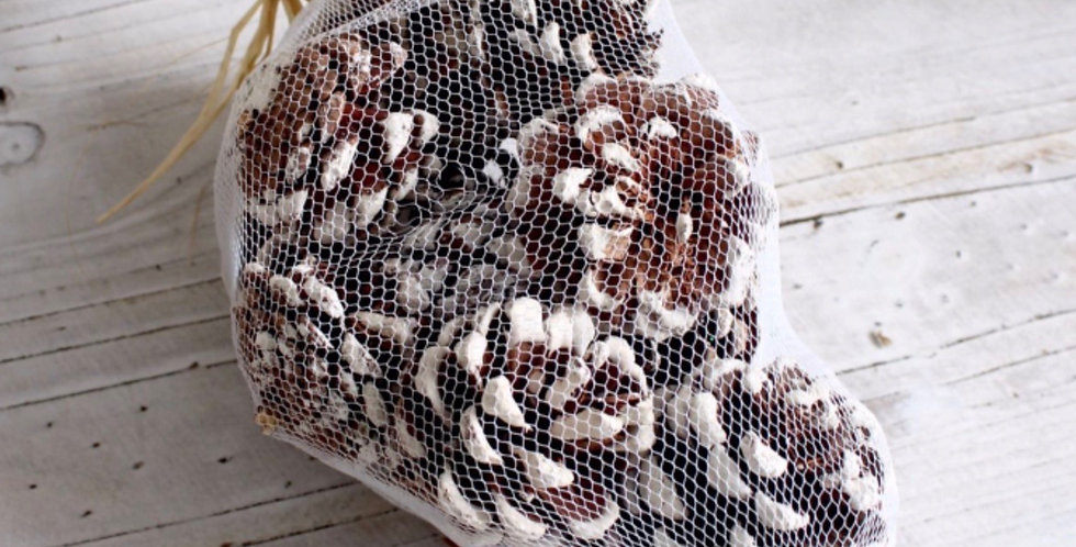 Frosted Pine Cone Bag