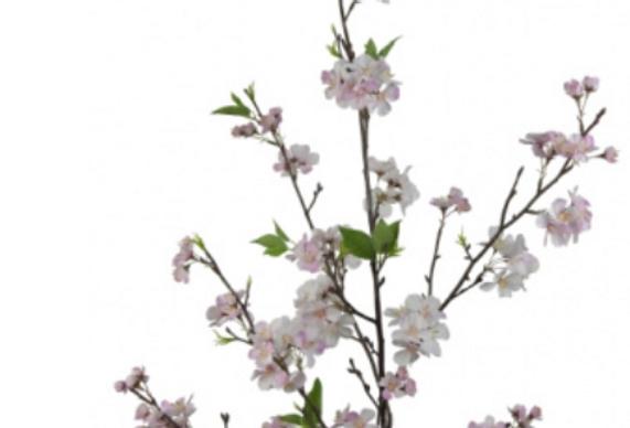 Palace Pink Cherry Blossom