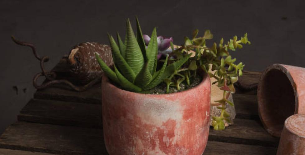 Faux Potted Succulent