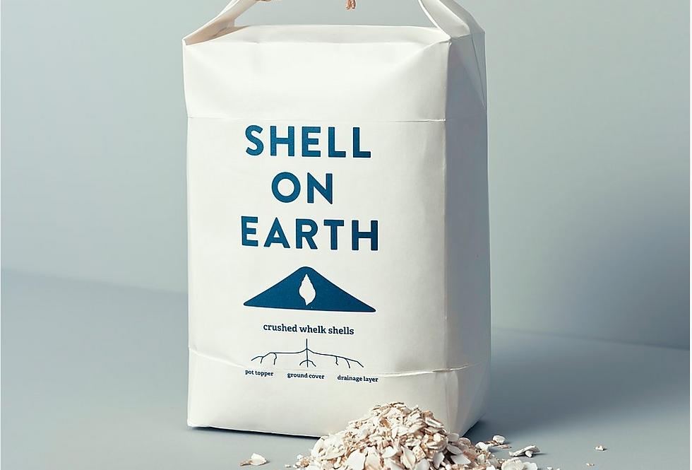 Crushed Decorative Shells