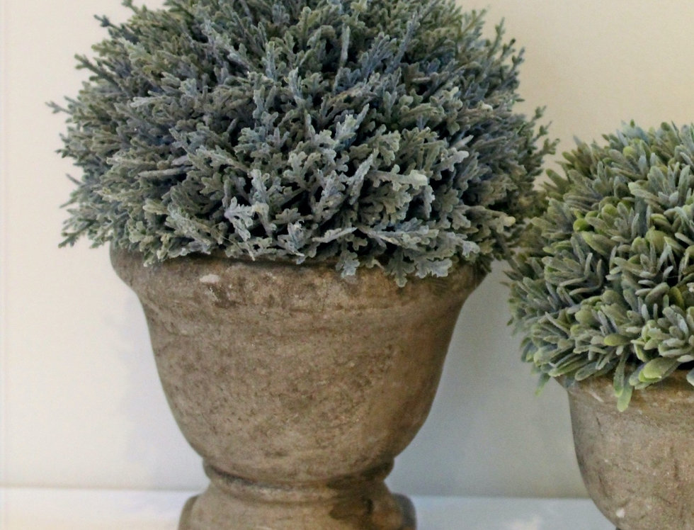 Potted Faux Cypress