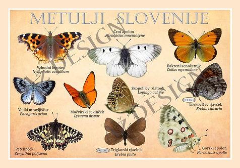 Metulji Slovenije