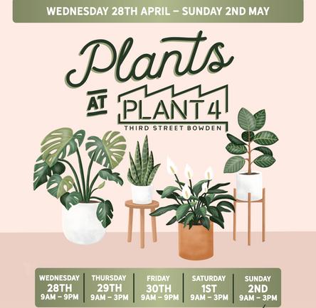 Plants at Plant 4