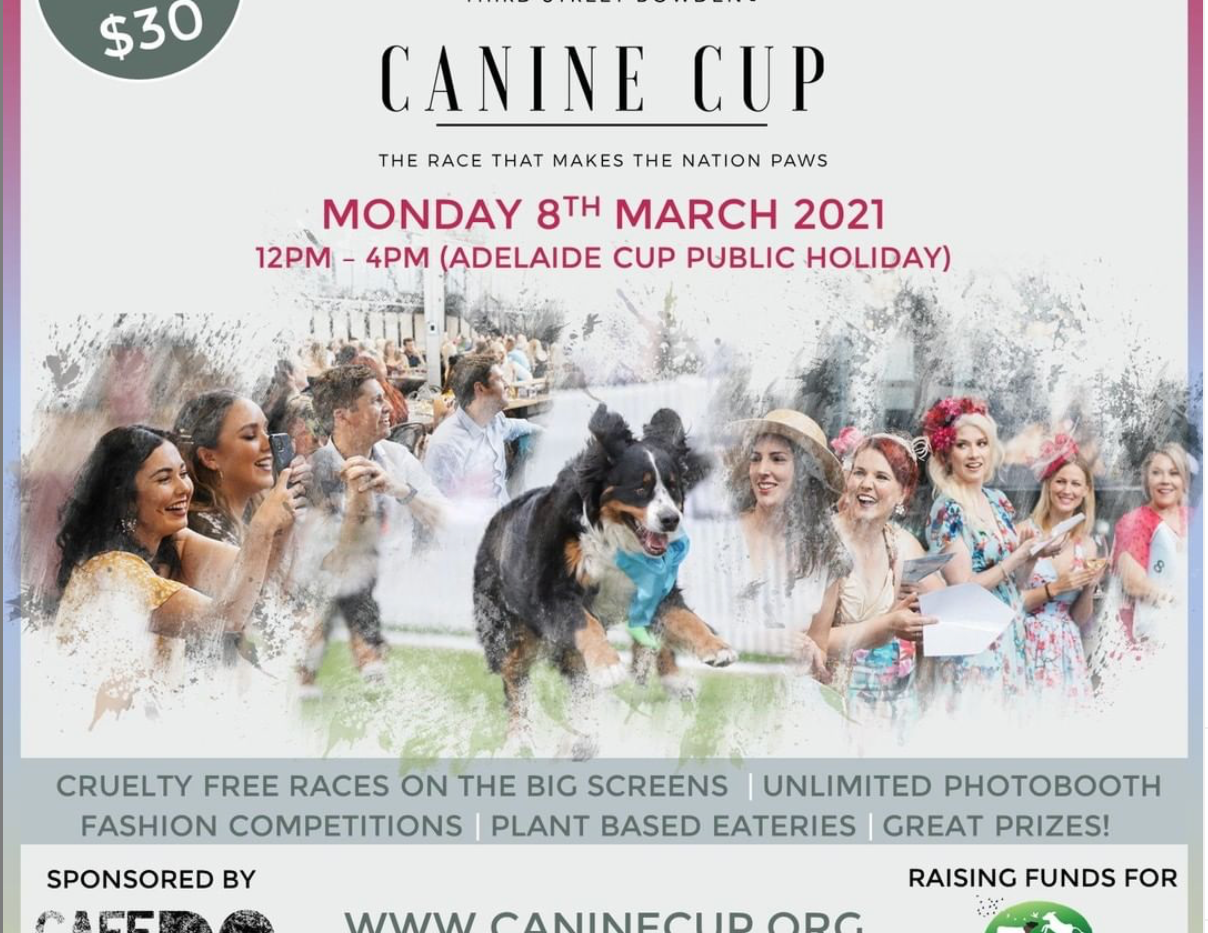 Canine Cup