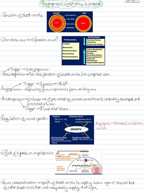 Medicine Year 3 Notes - Vascular Module Only
