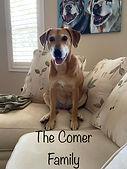 Comer Family sponsor.jpg
