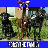 Forsythe Family logo_edited.jpg