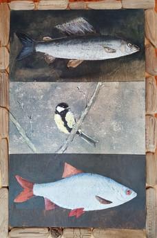 Lintu vai kala