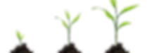 grow plants.png
