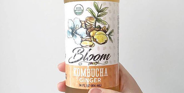 Case of Bloom Ferments Kombucha