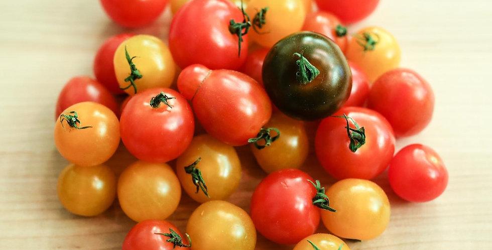 Organic Zenner Mixed Cherry Tomatoes 8oz