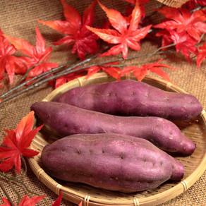 ジュニアアスリート必見!秋にお勧めしたい「補食食材」
