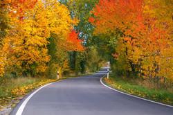 Spécial automne