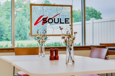 W. Soule