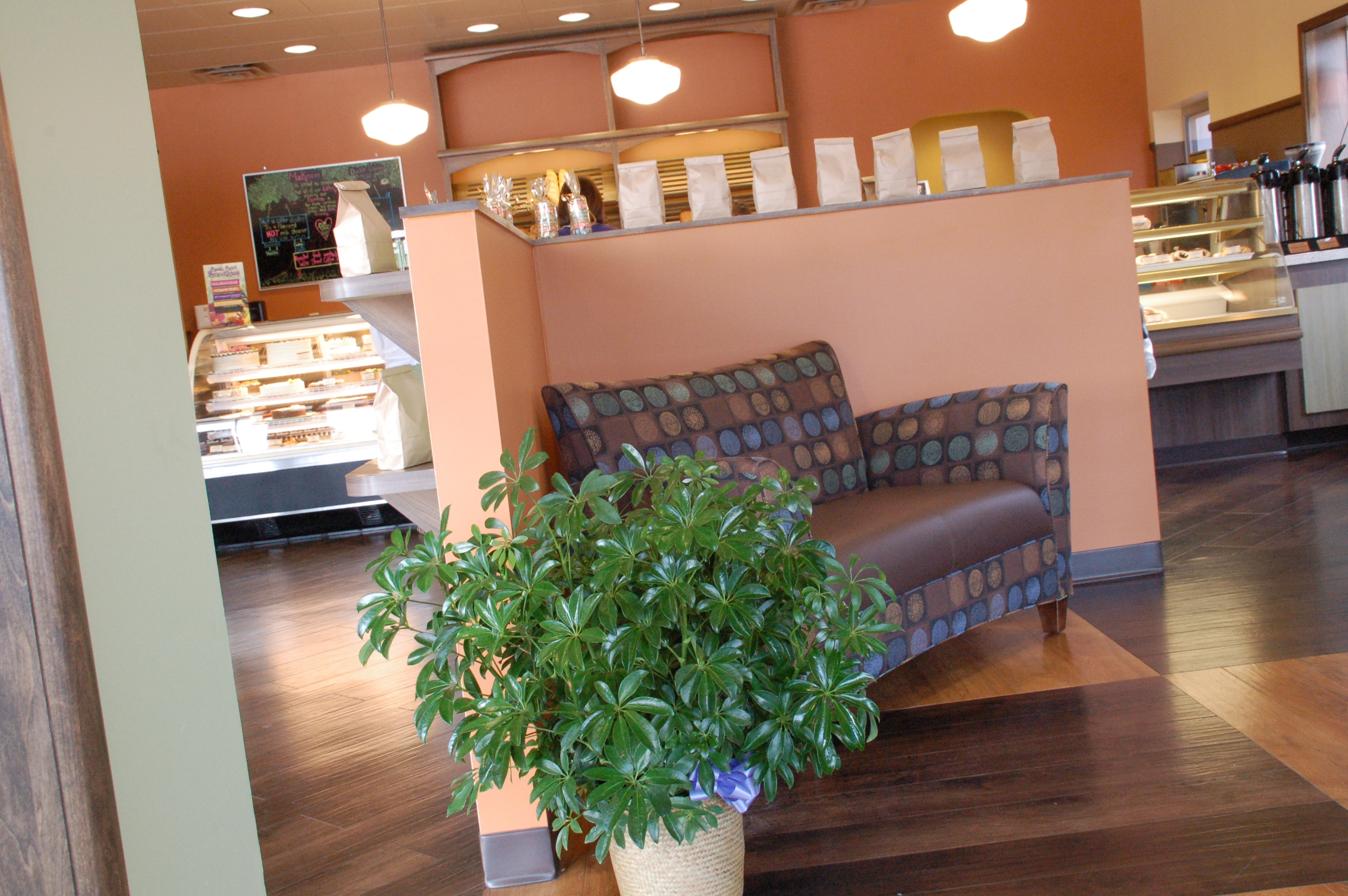 Bakery Seating Area Design