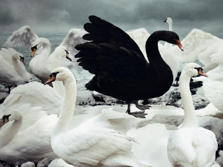 The Problem with Outliers and Black Swans in 2020