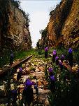 Canyon ex-ferrovia.jpg