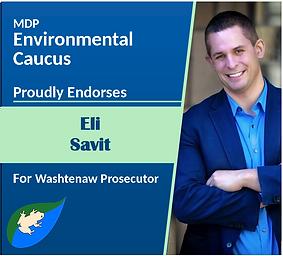 Eli-EndorsementGraphic.png