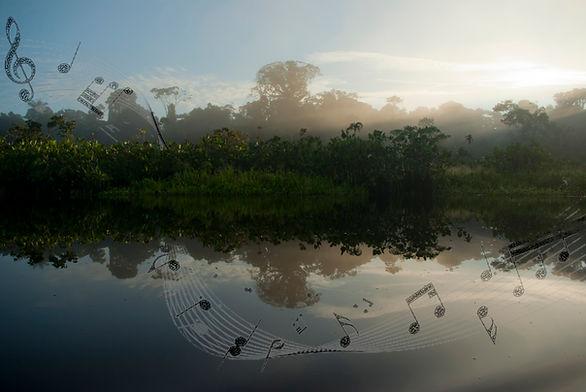 pentagram-in-the-forest.jpg