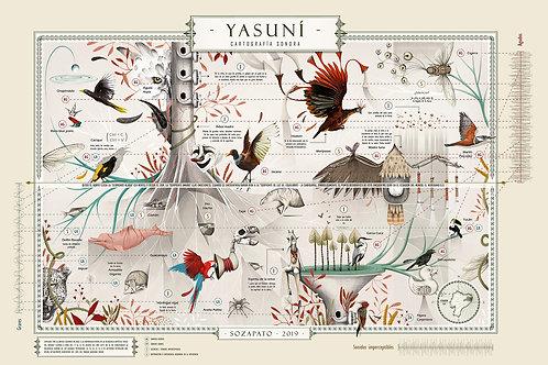 Cartografía Sonora del Yasuní