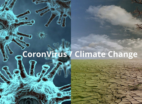 PHOENXT's view on Coronavirus and Climate Change