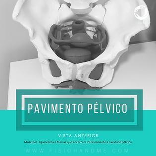 Fisioterapia Perineo