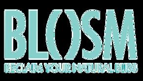 Logo_Bolsm-removebg-preview.png
