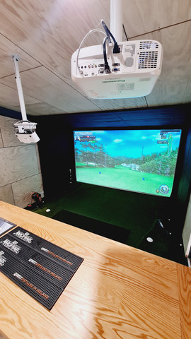 Bravo Golf Simulator with Panasonic Projector