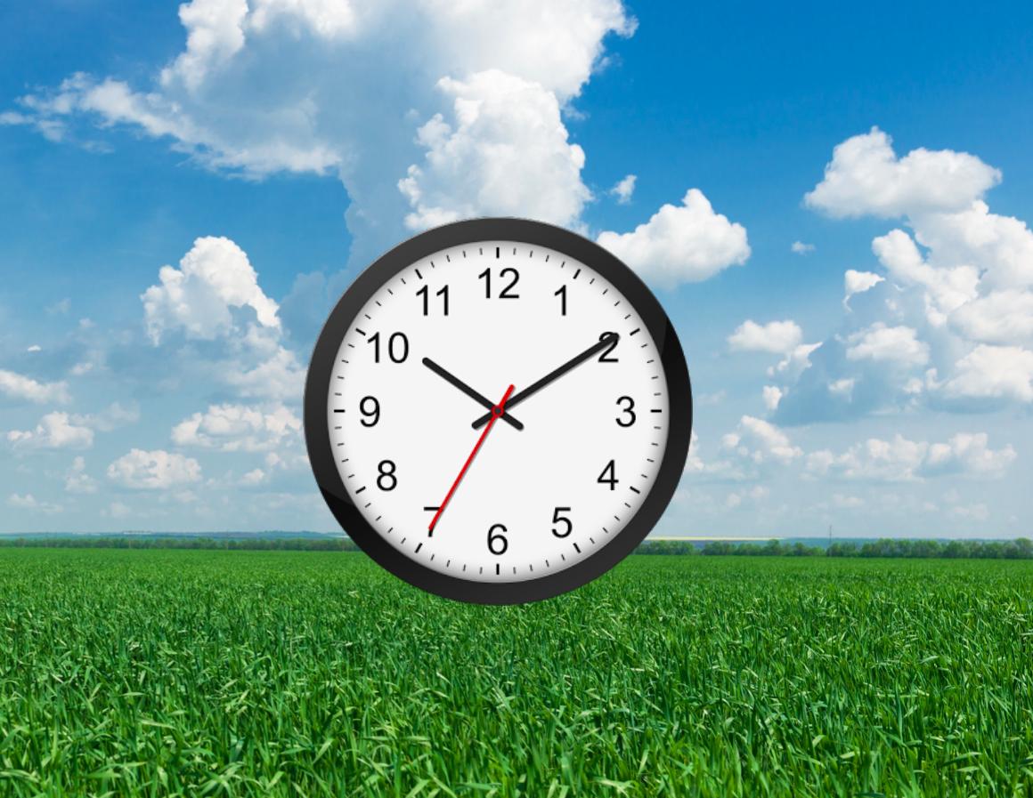 clock in field