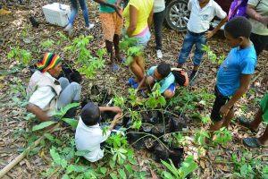 En San Cristóbal buscan recuperar lo que la violencia les arrebató