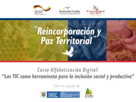 Alfabetización Digital: Una Apuesta por la Inclusión Social y Productiva para la Consolidación de la