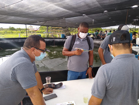 Reincorporados se capacitan y emprenden en piscicultura a través del sistema Biofloc