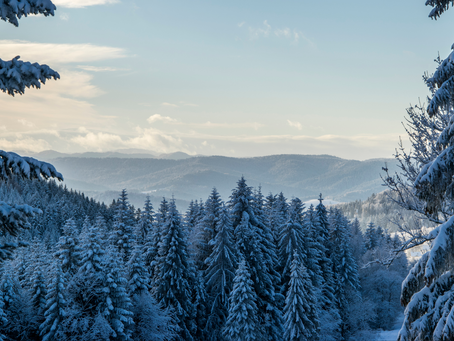 Top 8 Sustainable Ways to Beat the Winter Blues